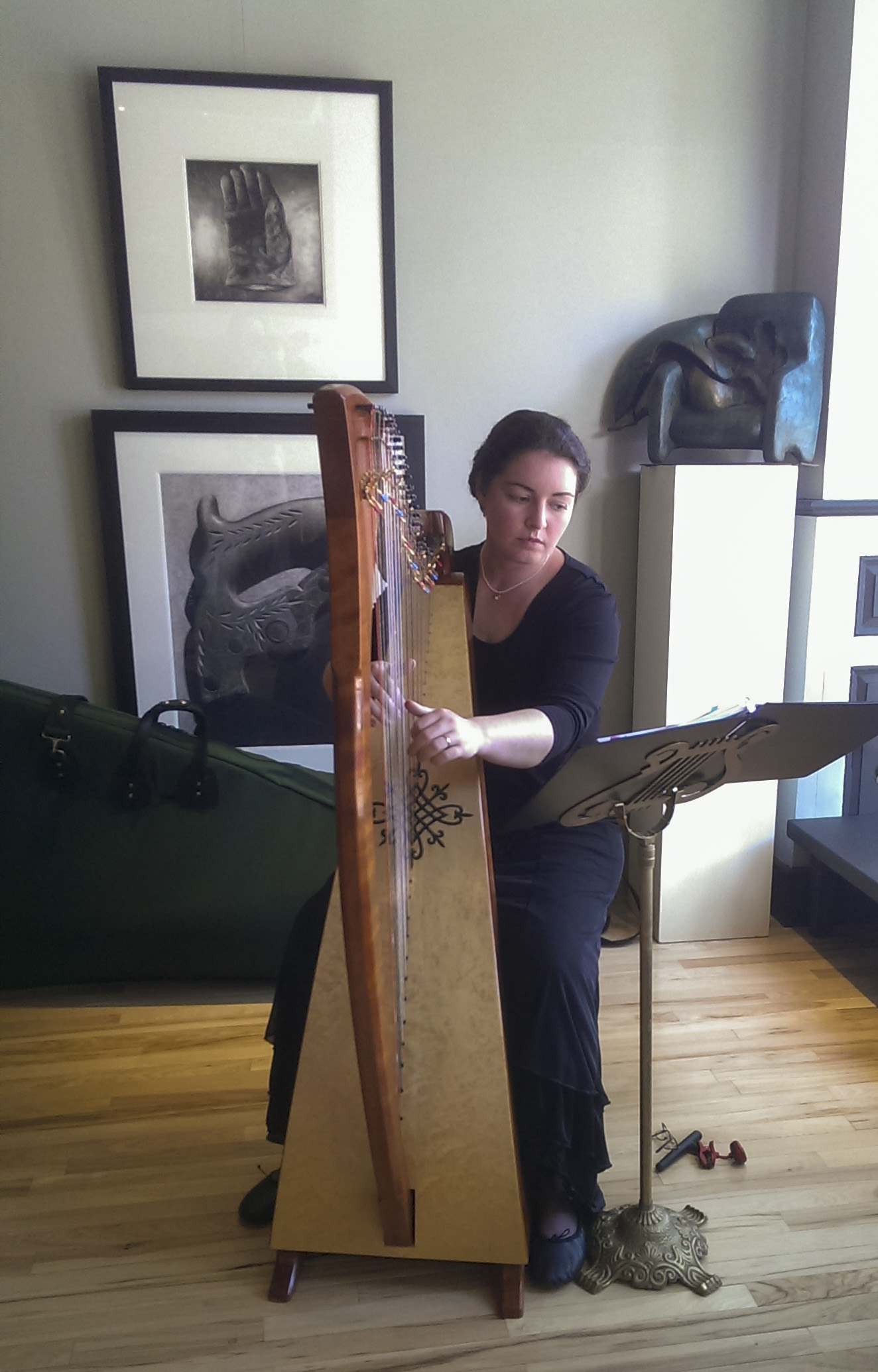Hands on Harps Workshop @ Union Episcopal Church Hall | Claremont | New Hampshire | United States